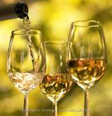 Wine Tasting and Ancient Corinth - Excursions Holiday in Greece